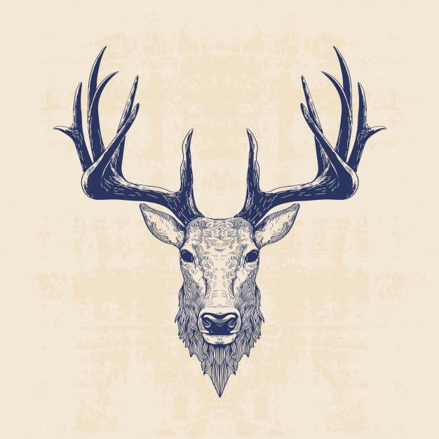 deer head 68633 5 jpg