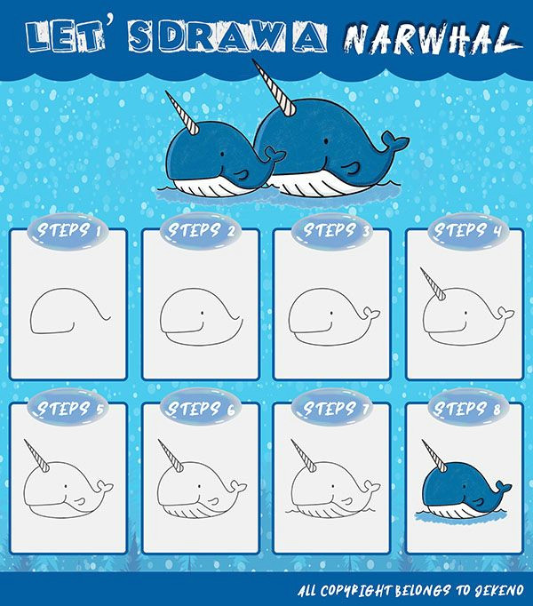 Easy Narwhal Drawing Learn How to Draw A Simple and Cute Narwhal Step by Step