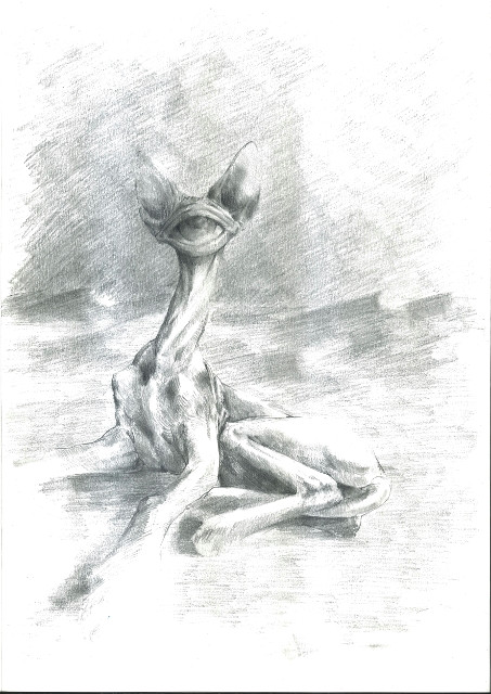 irmina pisarek 1 ohne titel 2019 bleistift auf papier 29 7x 42 cm jpg