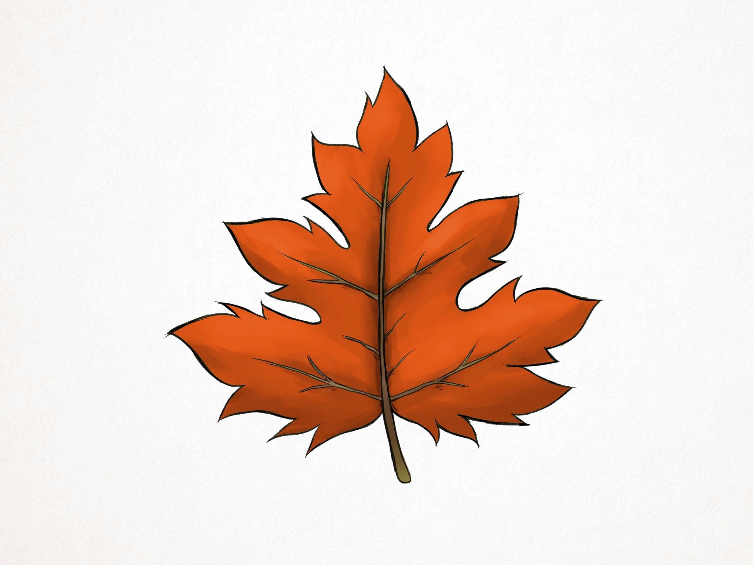 draw a maple leaf step 10 version 2 jpg