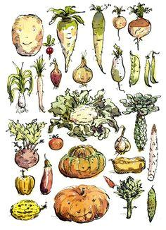 0e5de158e2495e99022f19d1bc726943 vegetable drawings veggie world jpg
