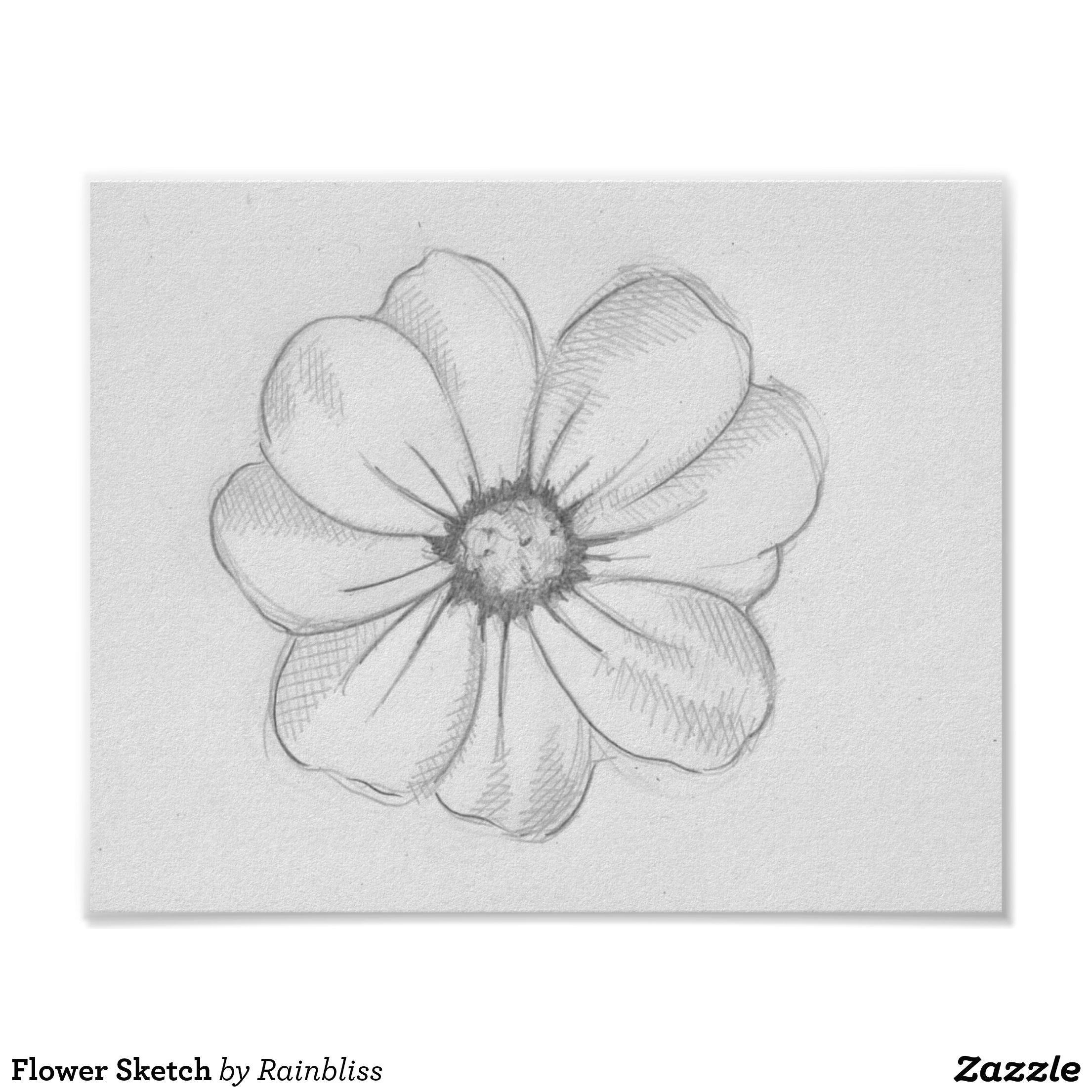 Easy Wildflower Drawing Flower Sketch Poster Cute Flower Drawing Realistic Flower