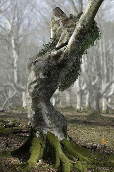 be024a9b6d09fd56f2589cb614648b72 tree carving tree sculpture jpg