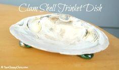 9f9ec0b48f37997b86f48a37c8a1318c anniversary clam shells jpg