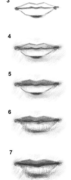 How to Draw A Girl Mouth How to Draw Lips Mouth Girl Women Lady Realistic Lips