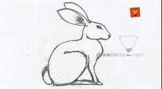 5f15cf227c081b47168e480a05a8bcc6 how to draw jpg