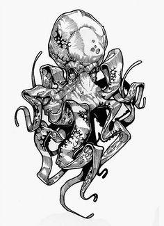 ec0d3e11ea852f08b353eb33f2acaeb2 octopus sketch octopus drawing jpg