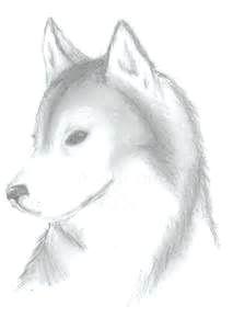 9644c357593970aca397569ed75146b9 drawing stuff drawing tips jpg