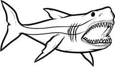 cb8e8b0d1137f0be315e3a376bf525b1 megalodon shark hammerhead shark jpg