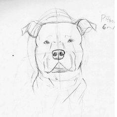 55291d5ffc4d74ac701bd68f004f8b77 drawing animals animal drawings jpg