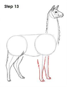 05e8f1f013d173909a51b275f95186db llama drawing llamas jpg