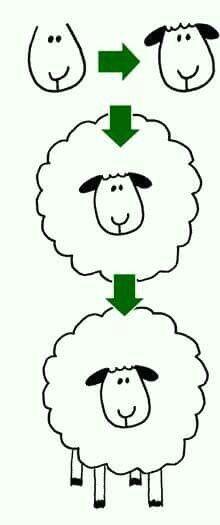 5dc20a55364188c7c0414e645e2e20e2 sheep drawing lamb drawing jpg
