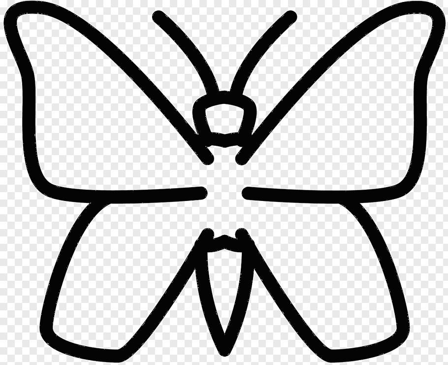 Invertebrate Animals Drawing Glasses Drawing Beetle Line Art Lepidoptera M 0d Ground