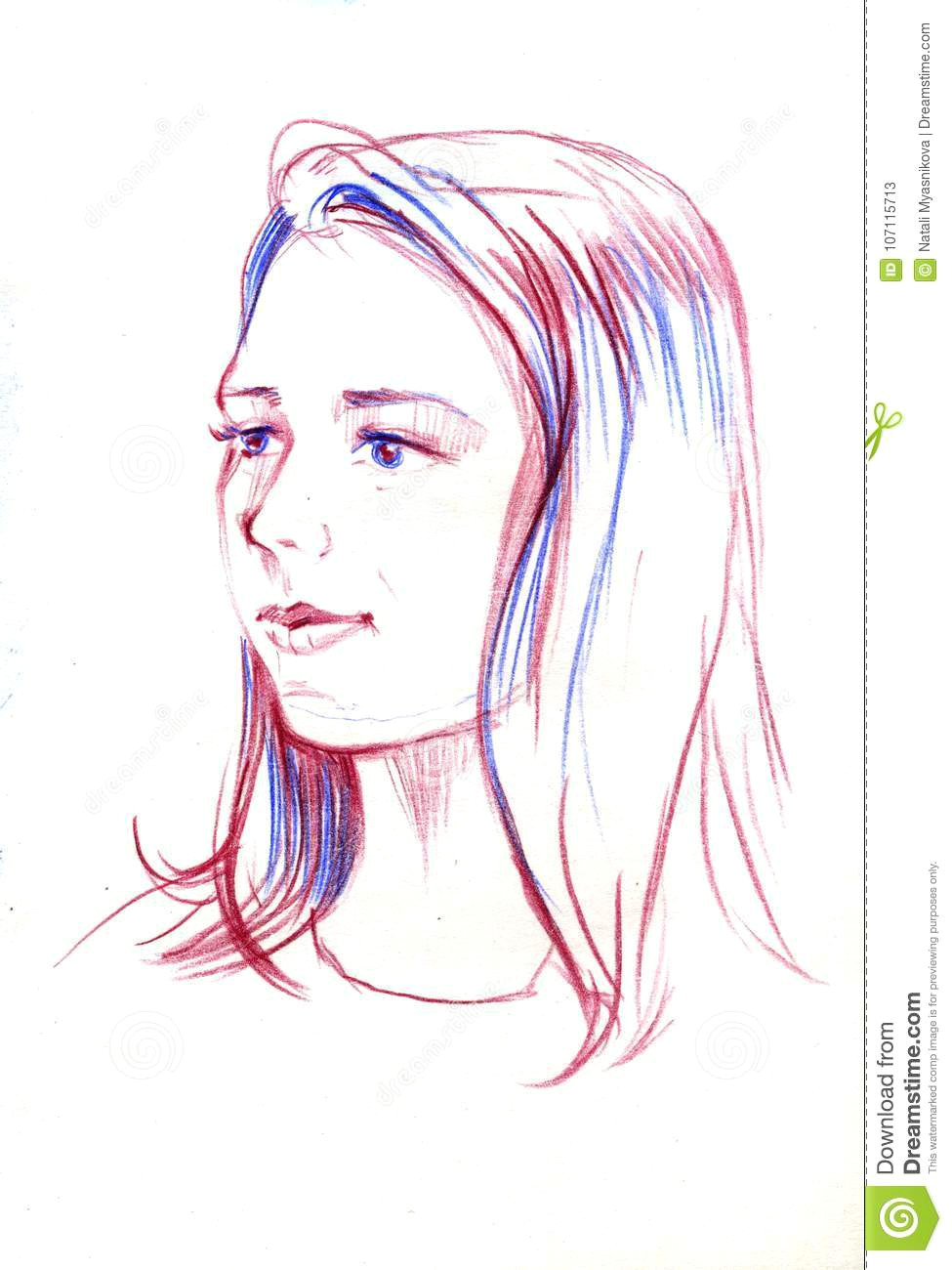 drawing portrait young woman female face sketch beautiful girl drawing portrait young woman female face sketch 107115713 jpg
