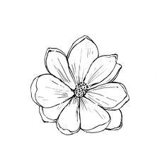 b1251fd7f8d2e7fd60f599c8413b29ab flower outline drawing flower drawings jpg