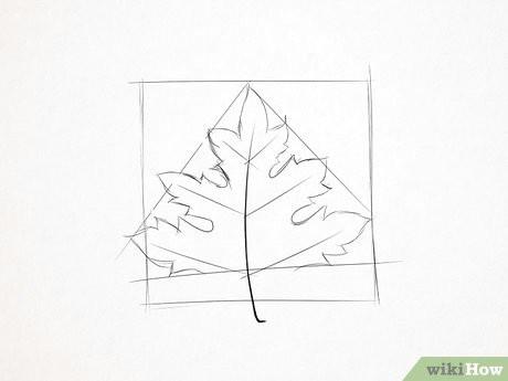 v4 460px draw a maple leaf step 5 version 2 jpg