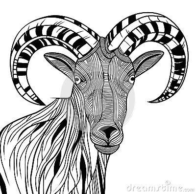 b0f90df925fd6d600bcc524fdf851df2 sketch tattoo crazy animals jpg