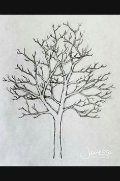 e10d41cb27155424102dd71f22c2603c drawings of trees tree sketches jpg