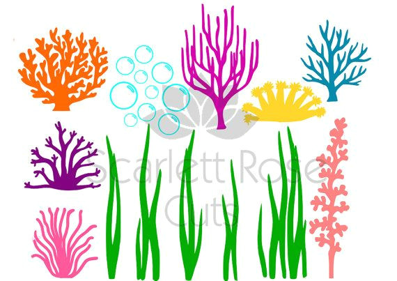 Seaweed Drawing Easy Under the Sea Seaweed Coral Bubbles Svg Ocean Life for