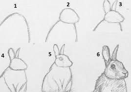 Step by Step Easy to Draw Animals Image Result for How to Draw Realistic Animals Step by Step