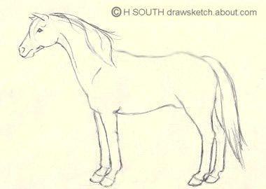 5fb697bd245b883c6cc2090113554f77 horse drawings animal drawings jpg