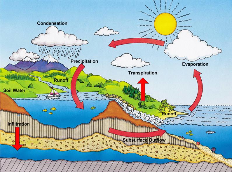 water cycle jpg