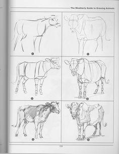 df16283919b32b3fc7ef49b8d88faa9b drawing animals cow jpg