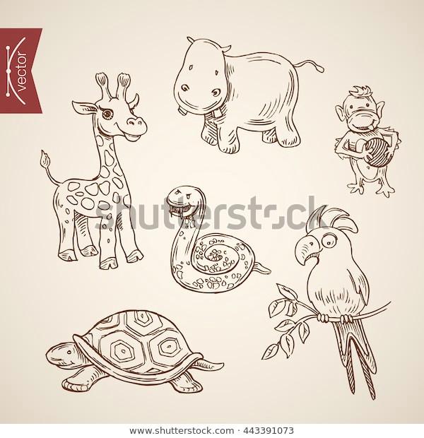 wild life zoo comic friendly 600w 443391073 jpg