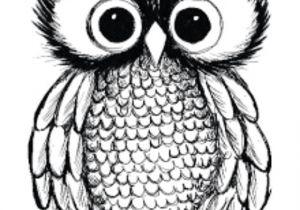 0wl Drawing Pin Od Poua A Vatea A Tezrez Na Nastenke Kreslenie Pinterest Draw
