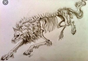 2 Wolves Drawing Half Of A Two Wolves Tattoo Concept I Want to Get Rough Idea Not