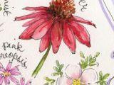2d Drawings Of Flowers 1762 Best Illustration 2d Art Images Botanical Illustration