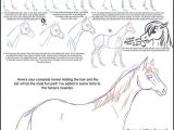 3 Drawing Techniques How to Draw A Horse Drawing Drawings Horse Drawings Art Drawings