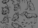 3 Wolves Drawing 109 Best Wolf Images Wolf Drawings Art Drawings Draw Animals