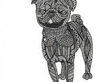 Abstract Drawing Of A Dog Abstract Drawing Using Pen Prints are 8 X 10 This Pug Was Drawn