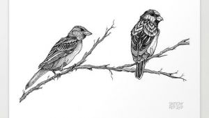 Animals Birds Drawing I Love Drawing Animals and Birds are No Exception This