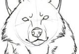 Basic Drawing Of A Wolf 886 Best Drawing Wolves Images In 2019 Wolves Anime Wolf Drawing S