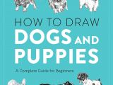 Beginner Easy Dog Drawing How to Draw Dogs and Puppies A Complete Guide for Beginners