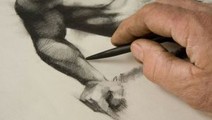 Cartoon Drawing Class Near Me Free Online Drawing and Sketching Classes