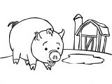 Cartoon Drawing Fundamentals Drawg Cartoon Fundamentals the Secrets In Drawing Animals Tuts Clip