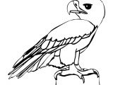 Cartoon Drawing Notebook Eagle Cartoon Drawing In 4 Steps with Photoshop D D N N N soft Cute
