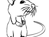 Cartoon Drawing Rat Rat Cartoon Drawing In 4 Steps with Photoshop In 2019 Drawing