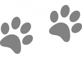 Cat Paw Drawing Easy Free Image On Pixabay Footprints Animal Dog Paw Cat