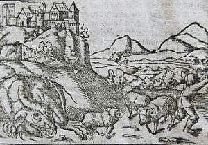 Cave Drawings Of Dragons Wawel Dragon Wikipedia