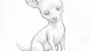 Chihuahua Drawing Easy Easy Drawings Of Chihuahuas Google Search Chihuahua