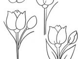 Childs Drawing Of A Rose 87 Best How to Draw Flowers Plants Images Drawing Flowers