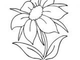 Childs Drawing Of A Rose Black Outline Drawing Flower White Flowers Free Drawing