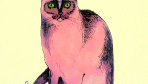 Cool Drawings Of A Cat Pink Cat Illustration Cats Cat Art Cats Illustration