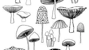 Cute Drawing Mushroom Pin by Ms Lemonade On Drawing Ideas Lessons Drawings Art Doodles