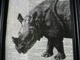 Cute Rhino Drawing 19 Best Rhinos Images Rhinos Rhinoceros Rhino Art