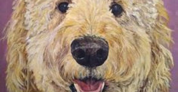 Dog Drawing Goldendoodle 114 Best Golden Doodle Clipart Images In 2019 Animal Drawings